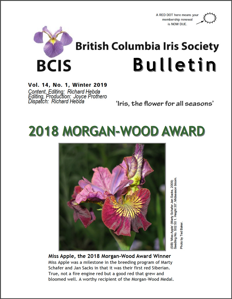 Winter 2019 BCIS Bulletin